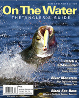 Aug 2014 On The Water NE cover